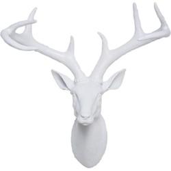 dierenkop hertengewei wit 45 x 40 x 20