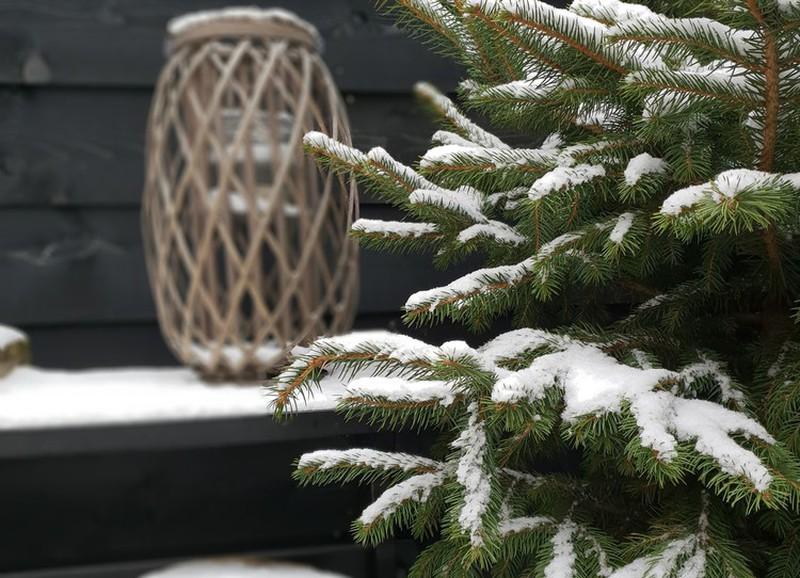 Zo maak je jouw tuin ook in de winter gezellig