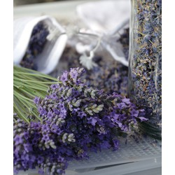 Lavendel Intens blauw 150 gram per bos