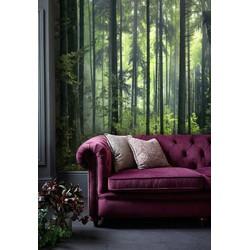 Zelfklevend behang XL Groen bos