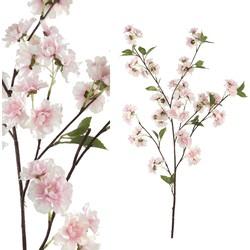 Blossom Flower - 48.5 x 28.0 x 86.5 cm