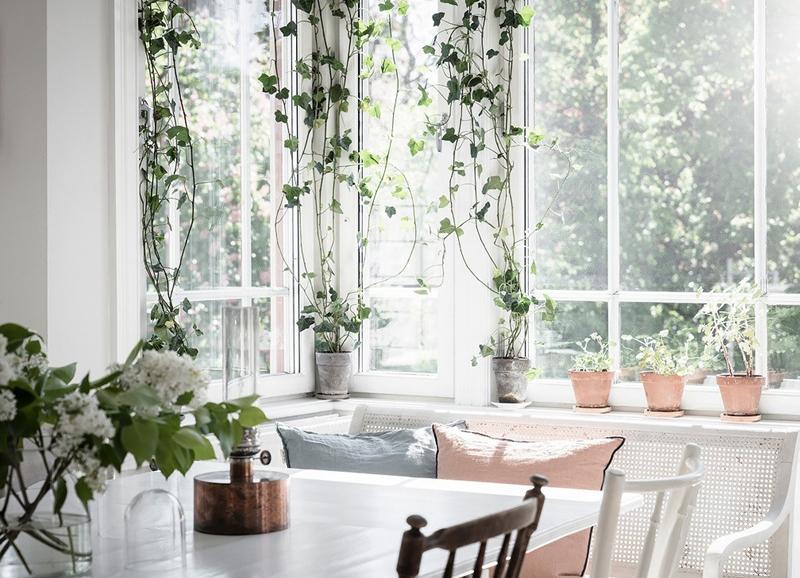 Stylingtip: hangplanten of klimop voor het raam hangen