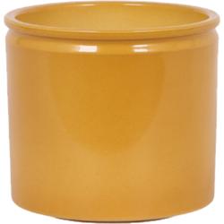 Curry sierpot