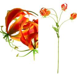 Garden Flower - 26.0 x 26.0 x 90.0 cm