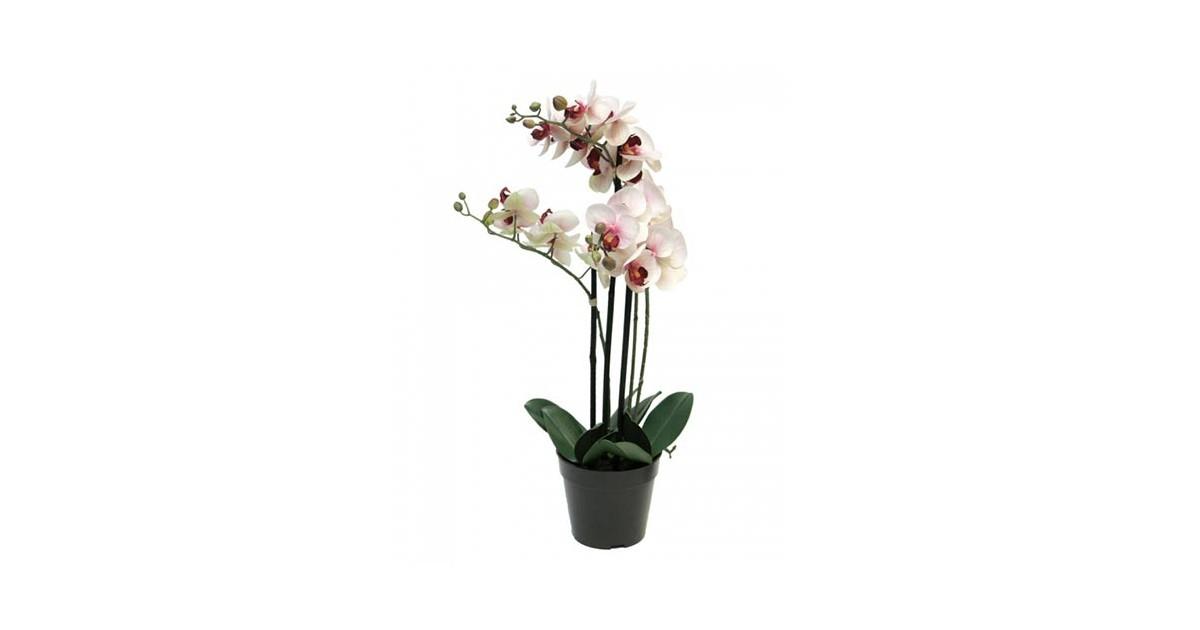 Phalaenopsis Orchidee In Pot 60 cm roze kunstplant Nova Nature