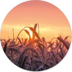 Muurcirkel klein sunset - Ø 30 cm