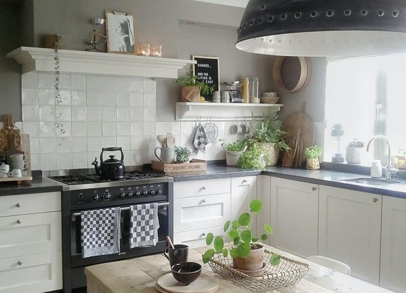 Voer jij jouw planten al keukenafval?
