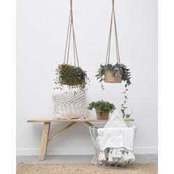Combi deal - Hang in there pakket (3x hangplant)