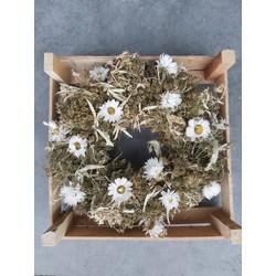 Bries aan Zee Krans van droogbloemen in 8 varianten - Witte bloem