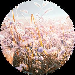 Muurcirkel klein winter morning flower - Ø 30 cm