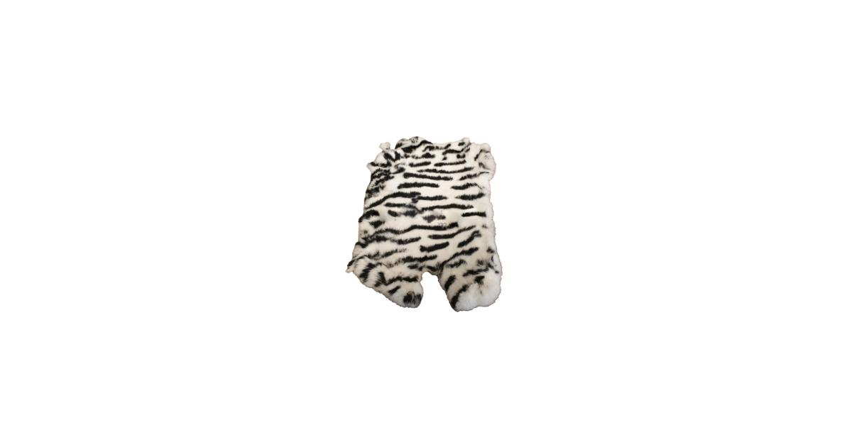Unknown Zebra Wit